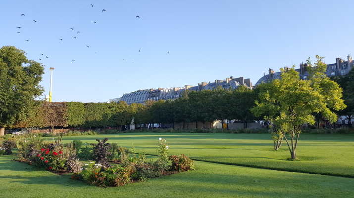 paris-tuileries.jpg